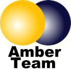 amber_team